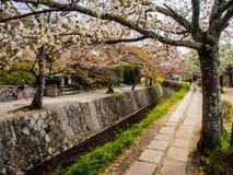 Le chemin du philosophe, Kyoto, Japon 1 Image libre de droits