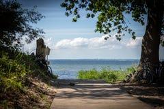 le chemin en bois mène à la plage de la mer baltique image stock