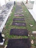 Le chemin en pierre de promenade de bloc en parc avec le fond d'herbe verte Image stock