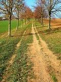Le chemin entre les champs image stock