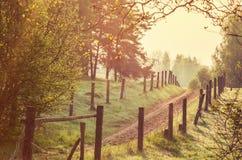 Le chemin forestier Photographie stock libre de droits