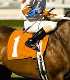 Le cheval du numéro un dispose à écrire la porte de début à la voie de cheval Photo libre de droits