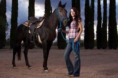 Le cheval et le curseur Photo libre de droits