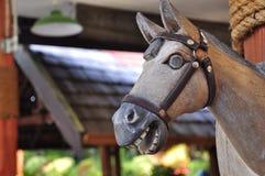 le cheval font à partir du bois image stock