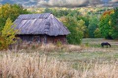 Le cheval frôle sur le fond du vieux paysan d'Ukrainien de maison Image libre de droits