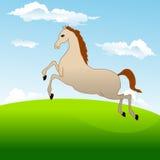 Le cheval le plus rapide galope à travers le champ Image stock
