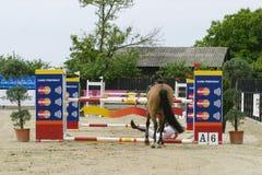 Le cheval manqué sautent photographie stock libre de droits