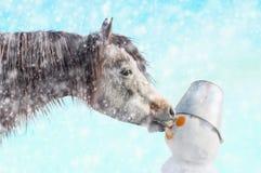 Le cheval mord le bonhomme de neige de nez, hiver de neige Image libre de droits