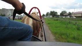Le cheval sautent le voyage de kucher de route banque de vidéos