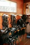 Le cheval selle la pose sur le mur de briques rustique à la lumière du soleil chaude image libre de droits
