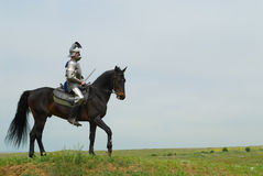 Le chevalier Photo stock