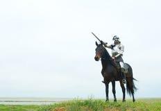 Le chevalier Photos stock