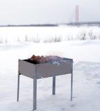 Le chiche-kebab est fait cuire sur le gril sur le charbon de bois Photos stock