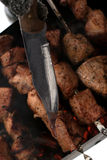 Le chiche-kebab est fait cuire sur le gril sur le charbon de bois Image stock