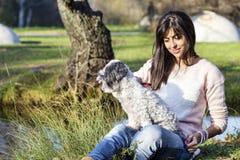 Le chien blanc est peigné avec une brosse en parc d'automne Photos stock