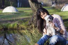 Le chien blanc est peigné avec une brosse en parc d'automne Photo stock