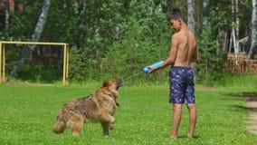 Le chien boit l'eau d'une arme à feu d'eau banque de vidéos