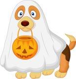 Le chien de bande dessinée s'est habillé comme fantôme fantasmagorique Photos stock