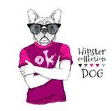 Le chien de hippie s'est habillé dans le T-shirt, écouteurs et avec des verres Illustration de vecteur Photo stock