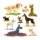Le chien différent multiplie la collection illustration de vecteur