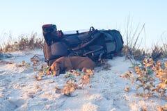 Le chien drôle fatigué, s'étend sur la plage Photo stock