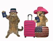Le chien et le chat vont voyager photos stock