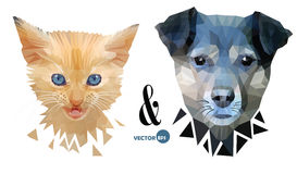 Le chien et le chat font face au portrait, aux animaux familiers d'amour, à l'amitié et à la confrontation Chaton et chiot, anima Photos libres de droits