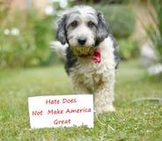 Le chien et le papier adoptés noirs et blancs mignons avec le texte Photo stock