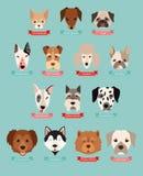 Le chien multiplie la collection avec le ruban et le nom Photographie stock libre de droits