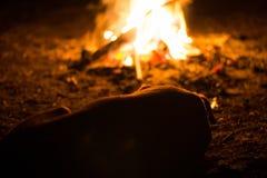 Le chien sans abri se chauffe par le feu la nuit Photo libre de droits