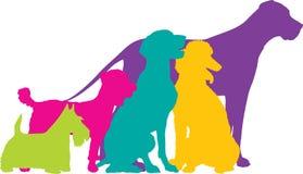 Le chien silhouette la couleur Photos libres de droits