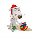 Le chienchien reçoit des cadeaux de Noël Photos libres de droits