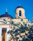 Le chiese cattoliche sono riempite di belle immagine e pitture immagini stock libere da diritti