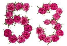 Le chiffre arabe 53, cinquante-trois, des fleurs rouges de a monté, isolat Images stock