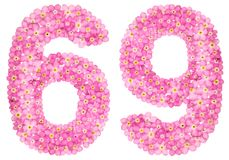 Le chiffre arabe 69, soixante-neuf, du myosotis rose fleurit, Photo stock