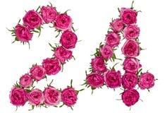 Le chiffre arabe 24, vingt-quatre, des fleurs rouges de a monté, isolat Images stock