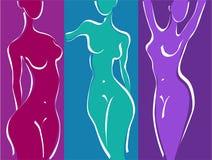 Le chiffre de la femme mince Photo libre de droits