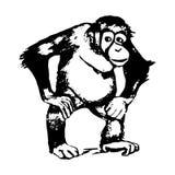 Le chiffre du singe - un orang-outan, graphiques Photo stock