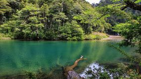 Le Chili 2015 photo stock