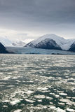 Le Chili - l'Amalia Glacier Landscape Photo stock
