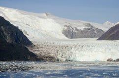 Le Chili - l'Amalia Glacier Landscape Image libre de droits