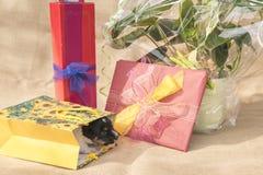 Le chiot minuscule de Jack Russell Terrier est au beau milieu de beaucoup de cadeaux photo libre de droits