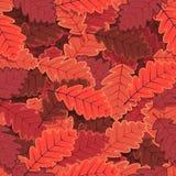 Le chêne sans couture d'hiver laisse le papier peint Photo stock