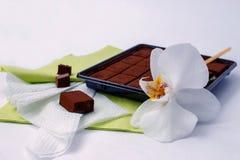 Le chocolat amer et l'orchidée japonais fleurissent sur le bureau blanc Image libre de droits