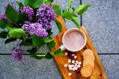 Le chocolat chaud avec des guimauves et des biscuits de beurre emboutis faits maison à côté du lilas s'est concentré sur le lilas Photographie stock libre de droits
