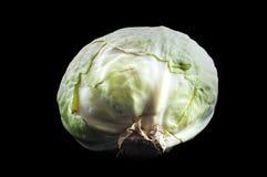 Le chou blanc est employé pour faire cuire un grand choix de plats photographie stock libre de droits