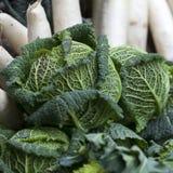 Le chou de Milan et les navets sur le marché de ferme Image stock