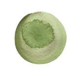 Le chou frisé et l'aquarelle ronde vert-foncé balayent la course d'isolement sur le fond blanc L'aquarelle souille la texture Ter Images libres de droits
