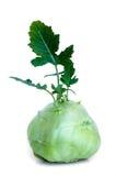 Le chou-rave frais avec le vert part sur le backround blanc d'isolement Photos stock