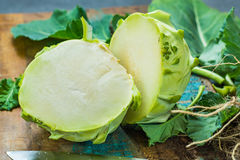 Le chou-rave vert frais avec le vert laisse tout préparé Image stock